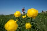 Wanderer in den Französischen Alpen