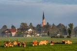 Kirche von Übersee im Chiemgau