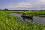 Kanufahren im Myakka River State Park - Der Myakka River State Park im Sarasota County ist einer der größten und ältesten State Parks in Florida und ist Lebensraum für eine Vielzahl von Vogelarten, aber auch für Schildkröten, Alligatoren und Rotluchse.