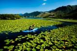 Kajakfahrer auf dem größten See in Montenegro