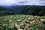 Der Hluhluwe-Umfolozi-Park ist der älteste Nationalpark Afrikas. Unter den vielen dort lebenden Wildtieren finden sich unter anderem sehr viele Nashörner.