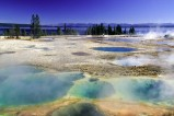 Geysir im Yellowstone-Nationalpark (USA) - Der Yellowstone-Nationalpark in den Rocky Mountains ist der älteste Nationalpark der Welt und gehört zum Weltnaturerbe der UNESCO.