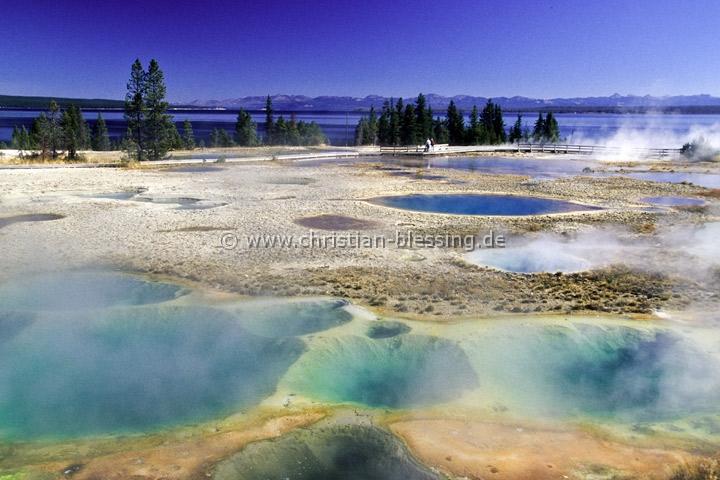 Geysir im Yellowstone-Nationalpark (USA) - Der Yellowstone-Nationalpark in den Rocky Mountains ist der älteste Nationalpark der Welt und gehört zum Weltnaturerbe der UNESCO.